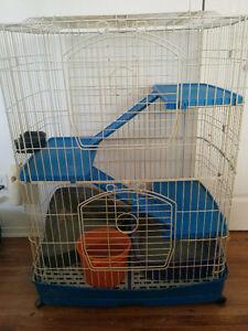 Furet+cage