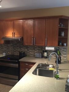 Used kitchen cabinets,sink, faucet and range hood!