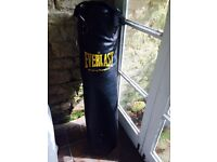 Everlast Boxing Punch Bag