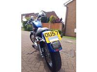 Harley Davidson Sportster/Bobber /Custom