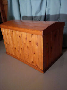 TRUNK / CHEST