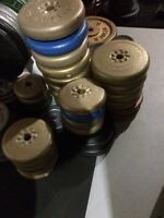 230 Lbs of Plastic Coated Weights 1 inch Hole