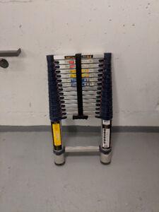 Metaltech 15.5 feet Telescopic ladder