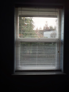 BLINDS with HARDWARE  -   for free
