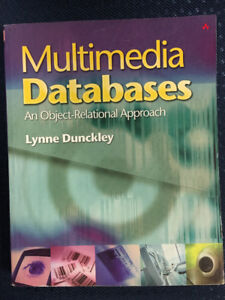 Multimedia Databases: An Object-Relational Approach