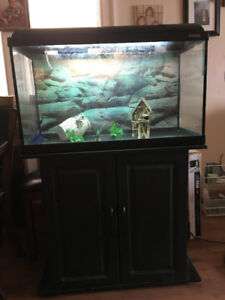 Approximately 28 gallon aquarium (stand included)