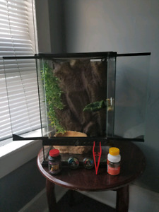 Crested gecko tank for sale!
