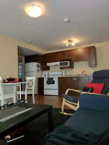 NICE CONDO*1CC*ALL INC/Furnished/15 Min FROM OTTAWA