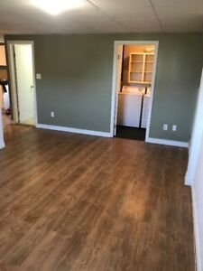 2 BEDROOM BASEMENT APARTMENT: HEAT AND LIGHT INCLUDED