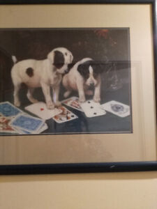 Jack Russel dogs playing card