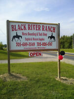 Black River Ranch & Tack lots to offer!