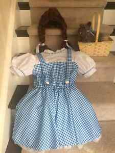 DOROTHY Halloween Costume (dress, wig, Toto in Basket) London Ontario image 1