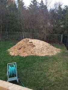 Free Wood chips
