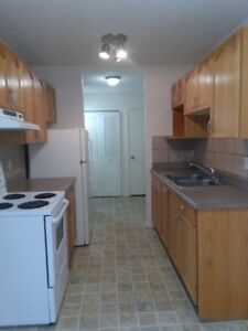 Three bedroom apartment for rent at 10707-111 Street Downtown