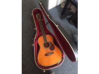 Crafted TA-050 guitar and Hiscox case