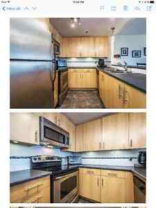 Beautiful One Bedroom in Waterfront Place