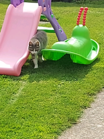 Playhouse and slide