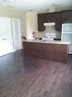 Bran-new Top-Floor 2 bedroom apartment downtown Ottawa + Balcony