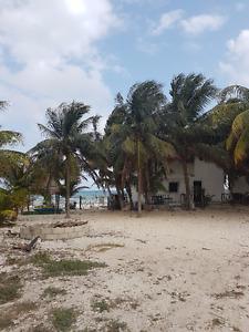 Cabana on the beach .-