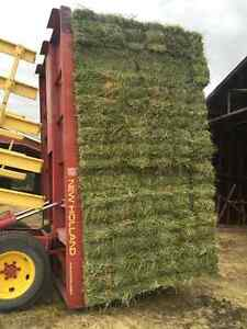 First & Seccond Cut Square Bales