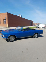 66 Chevelle Convertible (trades considered)