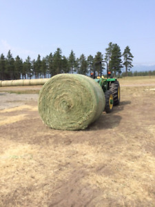HAY FOR SALE