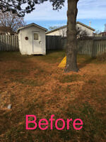 Lawn cuts -dump runs -cleaning