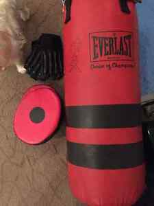 Everlast MMA heavy training bag, gloves, and punch shields