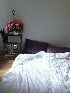 Room for Rent in Mile End/Outremont