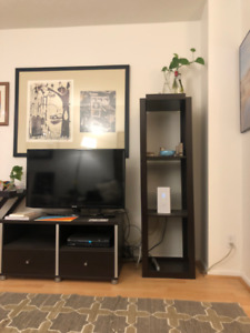 1 Bed + Den, Fully Furnished. Bay/Gerrard. $2100, mid-Aug