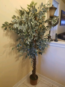 Artificial plant 6.25 ft