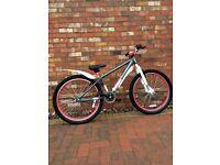 Mesh Dirt Jump Bike (large BMX - no gears)