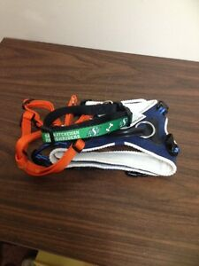 Saskatchewan Roughriders dog collar plus two harnesses