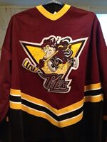 Autographed hockey jerseys for sale