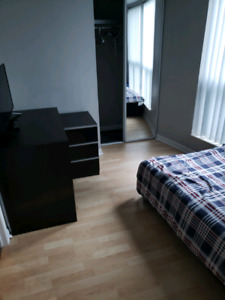 [Roommate Wanted - Renting a 1bed + private bathroom]  Yonge & F