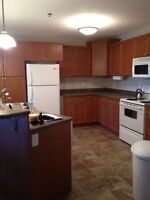 Two Bedroom Apartment on Rochdale Blvd