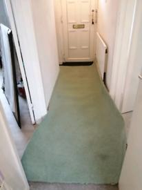 Green Offcut Carpet