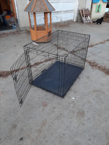 Large Collapsable Wire Dog Crate (1 Door) - Sherwoord Park AB