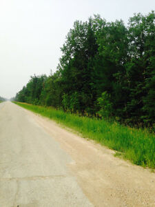 2 ACRE LOTS FOR SALE, 20 MINUTES FROM FALCON LAKE