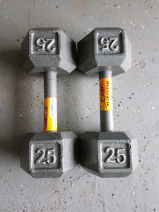 Dumbbells pair of 25pds.