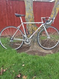"DAWES Classic Giro 300 21""Hand built Pro Racer Mint Condition Bike !!"