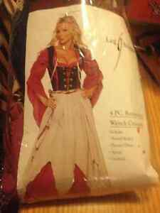 New Adult 5 piece Renaissance  Wench costume