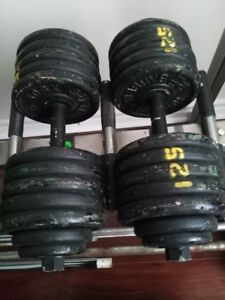 BIG BOY HEAVY DUMBBELLS FOR TRADE