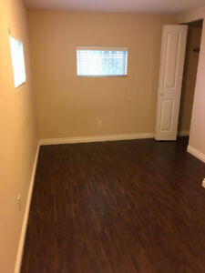 roommate wanted for bsmt suite