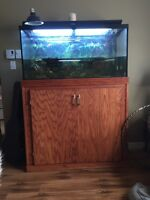 90 Gallon Aquarium for Sale with Stand and Accessories