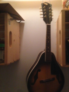 8 string mandolin