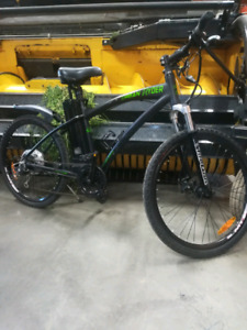*Great Deal* 7-Speed E-Bike