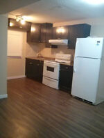 URGENT- One Bedroom newly built Walk out Basement for Rent