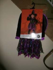 New Witch Costume for 2-4 year old