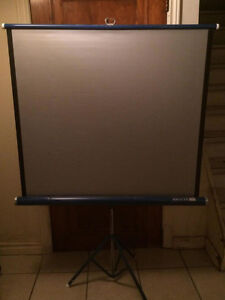 Projector screen (3ft x 3ft)